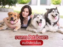 รายการ Petlovers - all best kennel
