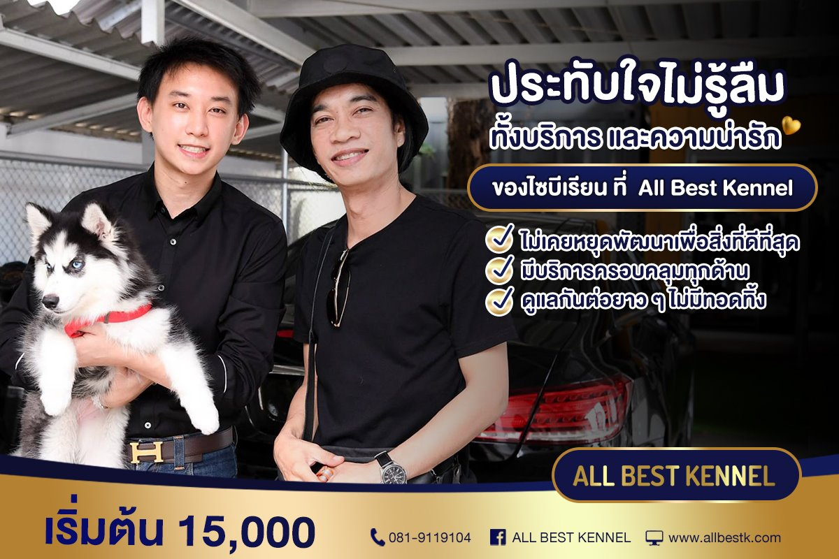 All Best Kennel